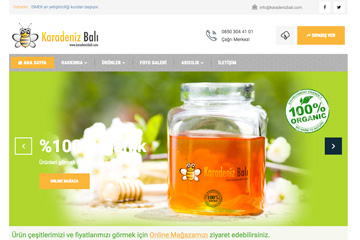 Karadeniz Balı Web Sitesi Tasarımı