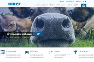 Maer Web Sitesi Tasarımı