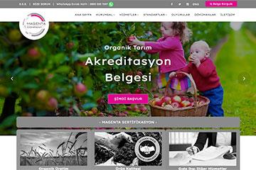 Magenta Web Sitesi Tasarımı