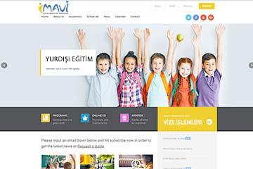 Mavi Vize Web Sitesi Tasarımı
